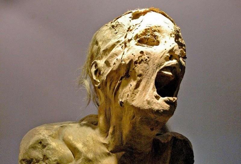 В Сестрорецке нашли женскую мумию