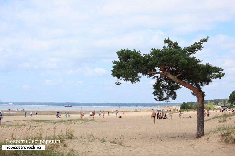 МЧС одобрило для купания 14 пляжей в Курортном районе